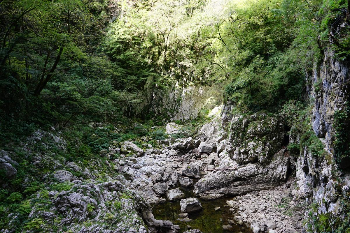 b830b8c80f77120df1781e4cc1907bd4 - 【スロベニア ポストイナ・シュコツィアン鍾乳洞】ブレッド湖だけじゃもったいない!巨大鍾乳洞