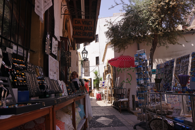 【キプロス ニコシア・レフコーシャ】国境に分断された街。その国境の越え方。