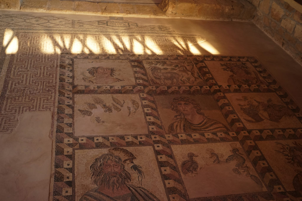 DSC07212 1024x683 - 【キプロス パフォス】ここはリゾートと遺跡の街。一人旅してきた。