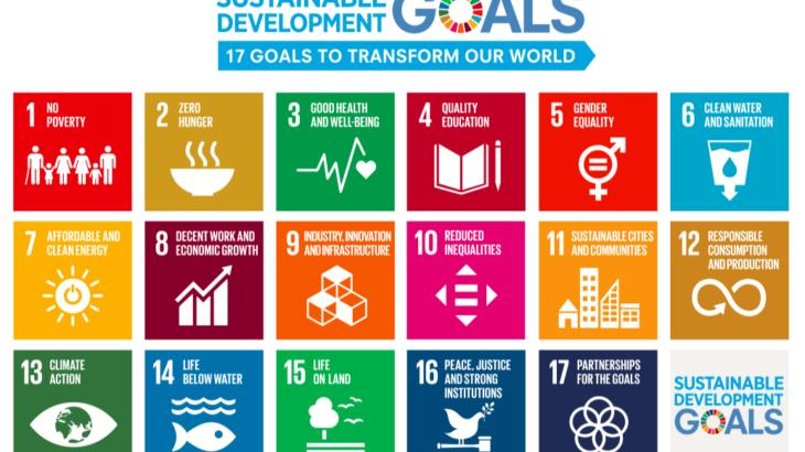 cf87628479184cdedb807eab59b893f0 730x410 - 未来を見越して今を生きよう。SDGs(持続可能な開発目標)とは。