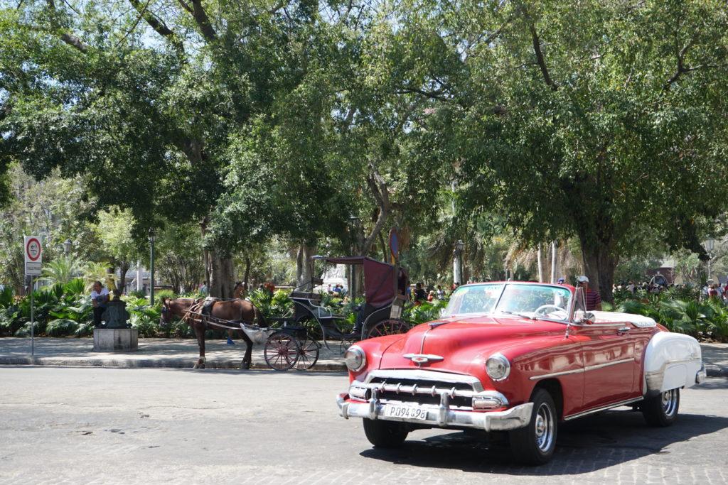 DSC04706 1024x683 - 【キューバ ハバナ】旅に出てみよう。日本では起こらないことがたくさん起こるのだ