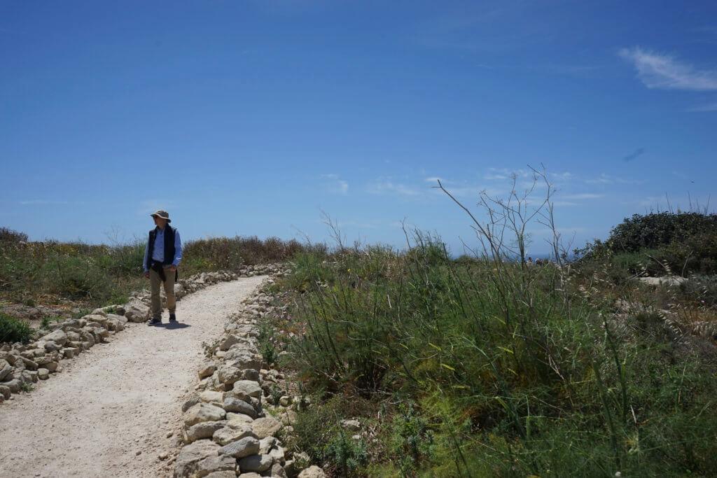 DSC06719 1024x683 - 【マルタ旅行記4】蒼い海と極彩色。他に何かいる?イムドラ神殿
