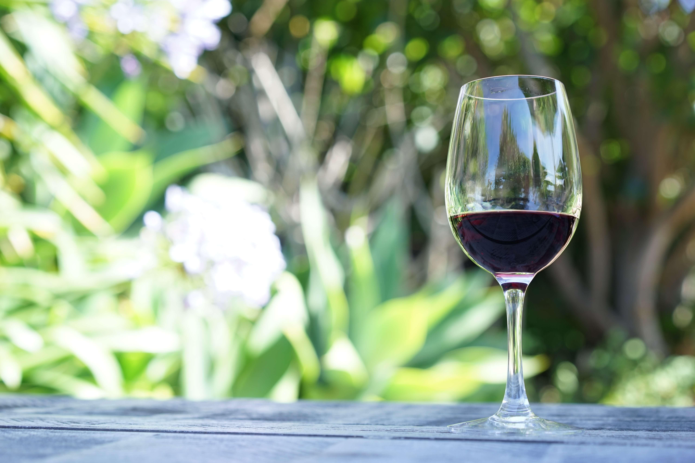 DSC01780 - ワインの世界!赤ワインに白ワイン。ロゼ。そして・・・緑ワインにグレーワイン?