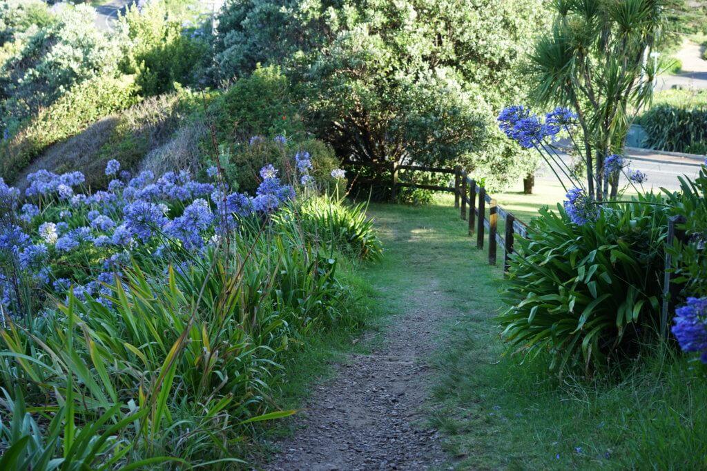 DSC01818 1024x683 - 【ニュージーランド ワイヘキ島】ワイヘキ島へのアクセスとモデルコース