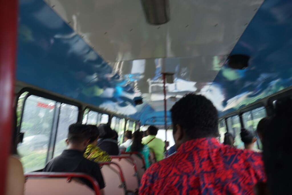 DSC01850 1024x683 - 【フィジー ナンディー】トランジットで行けるナンディーのベストスポット!ダウンタウンへの行き方・フィジーのお土産