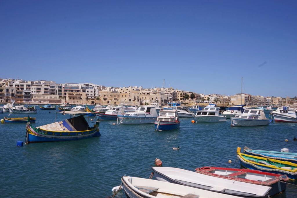 DSC06732 1024x683 - 【マルタ旅行記5】蒼い海と極彩色。他に何かいる?マルサシュロック