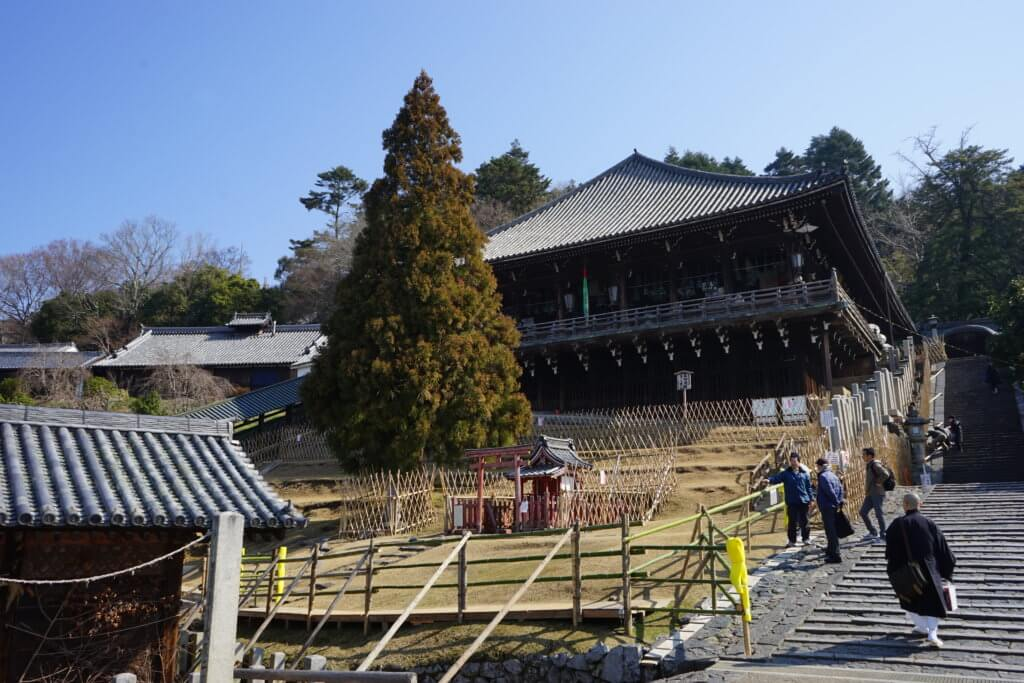 DSC01910 1024x683 - 【奈良】修二会の魅力は奈良だし、鹿は今日も自由だ