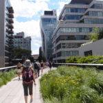 【ニューヨーク】時の流れを有効活用したハイラインの彩る文化的空間