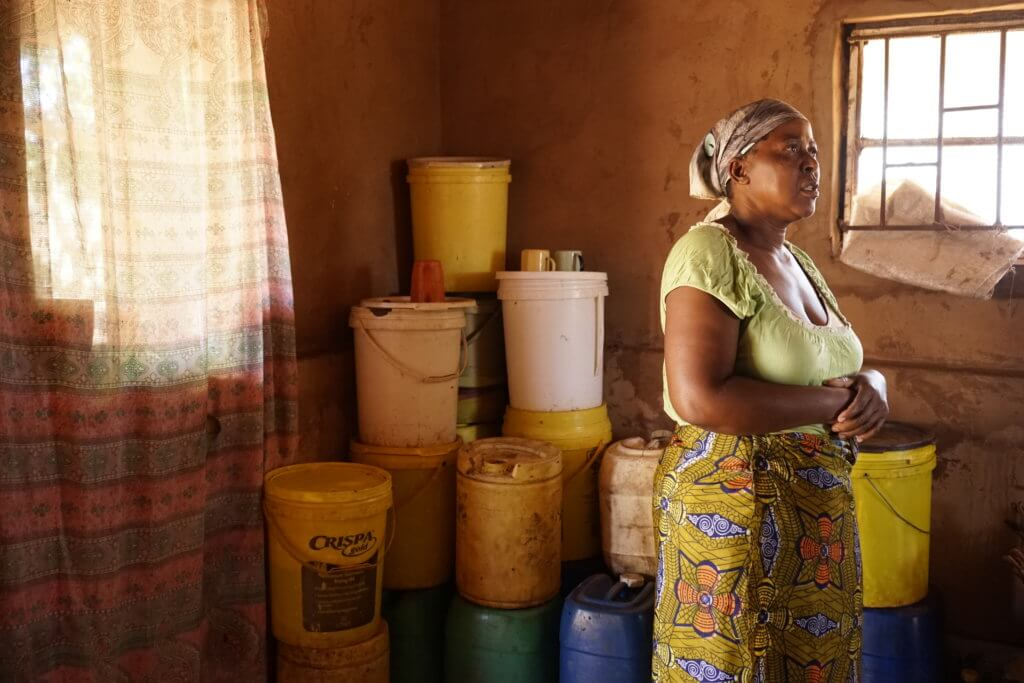 DSC3110 1024x683 - 【ジンバブエ旅行記5】初めてのアフリカ・ジンバブエひとり旅!電気も水道もない村