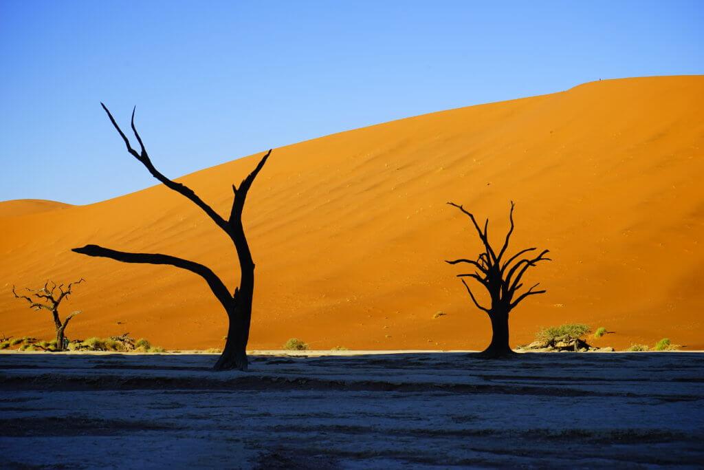DSC3773 1024x683 - 【ナミビア ナミブ砂漠・セスリム】絵画のような景色。ナミブ砂漠デッドフレイへの行き方