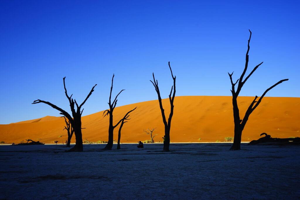 DSC3776 1024x683 - 【ナミビア ナミブ砂漠】ナミブ砂漠の美しい赤。その成り立ちについて。