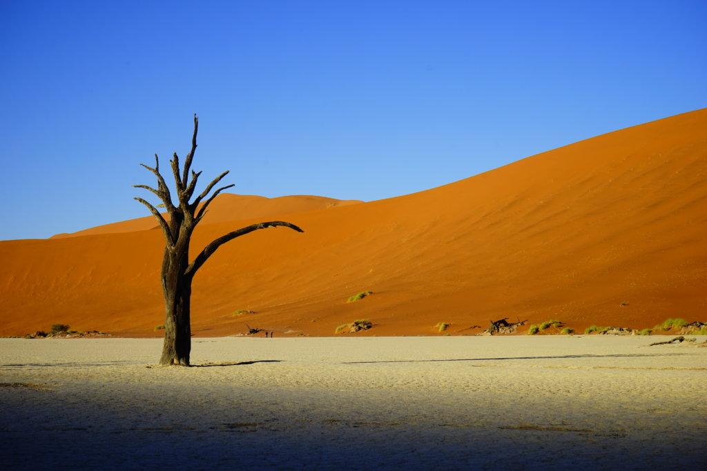 DSC3804 1024x683 - 【ナミビア ナミブ砂漠・セスリム】絵画のような景色。ナミブ砂漠デッドフレイへの行き方
