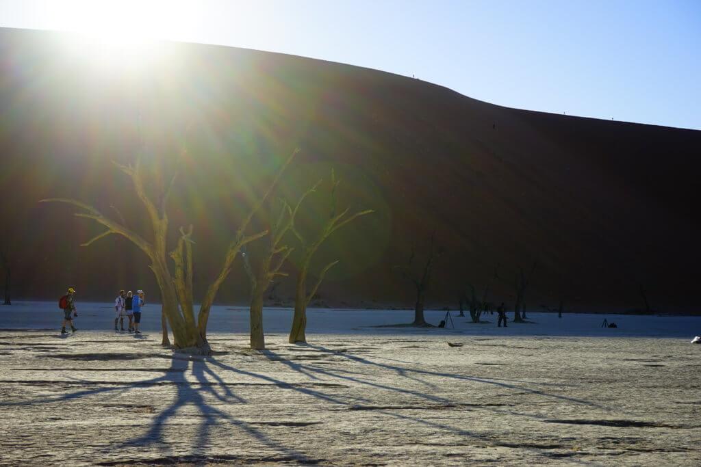 DSC3813 1024x683 - 【ナミビア ナミブ砂漠・セスリム】絵画のような景色。ナミブ砂漠デッドフレイへの行き方