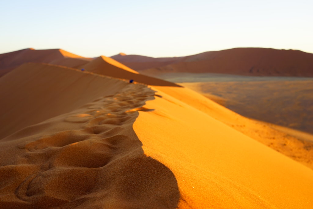 DSC4013 1024x683 - 【ナミビア ナミブ砂漠・セスリム】絵画のような景色。ナミブ砂漠デッドフレイへの行き方