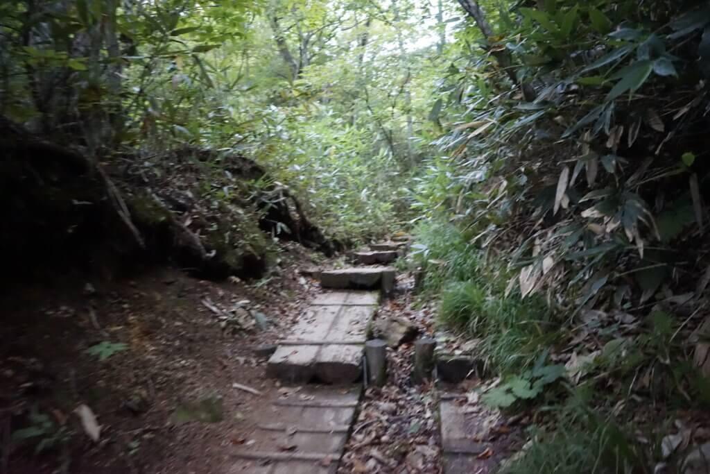 DSC5878 1024x683 - 【尾瀬(2)】草紅葉香る初秋の尾瀬。尾瀬沼から温泉小屋まで