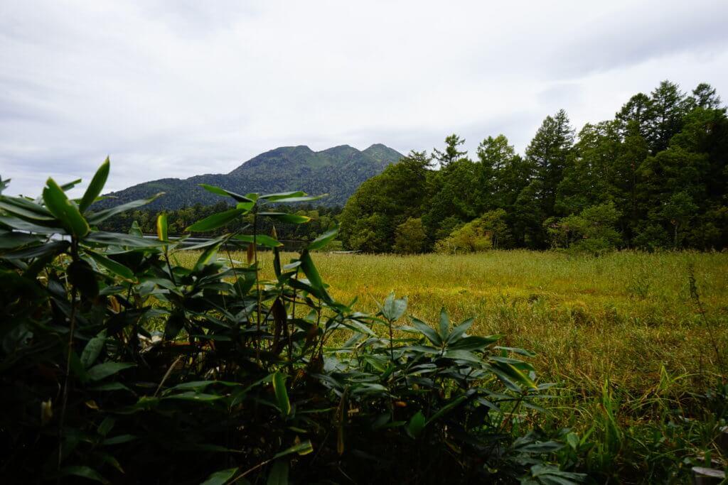 DSC5909 1024x683 - 【尾瀬(2)】草紅葉香る初秋の尾瀬。尾瀬沼から温泉小屋まで