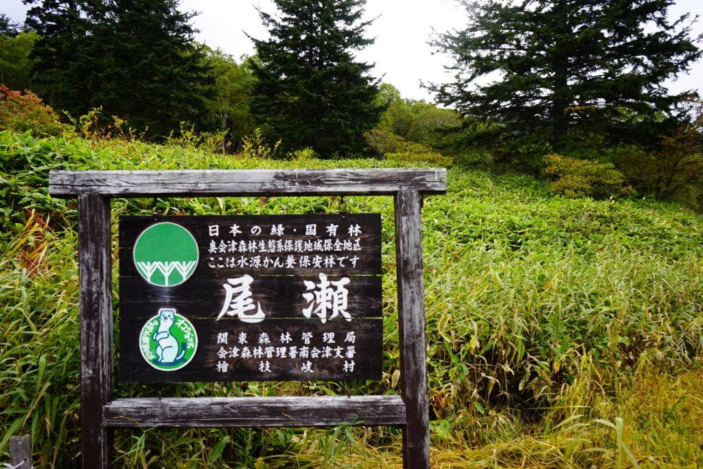 DSC5923 1024x683 - 【尾瀬(1)】バスタ新宿から大清水へと始まる尾瀬の旅。草紅葉の尾瀬までの道