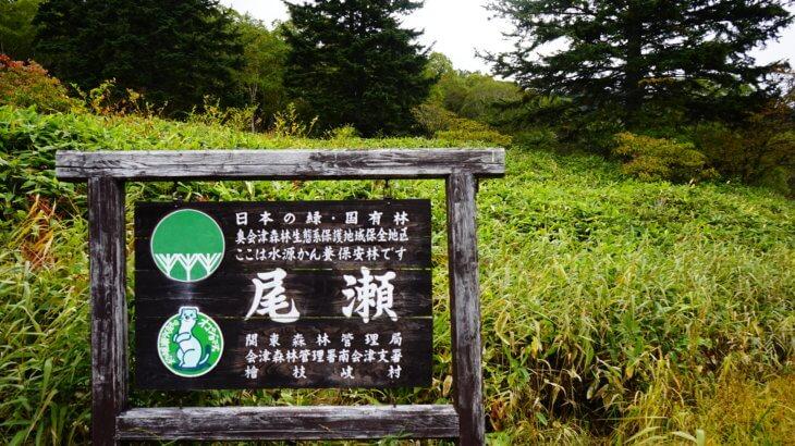 DSC5923 730x410 - 【尾瀬(1)】バスタ新宿から大清水へと始まる尾瀬の旅。草紅葉の尾瀬までの道
