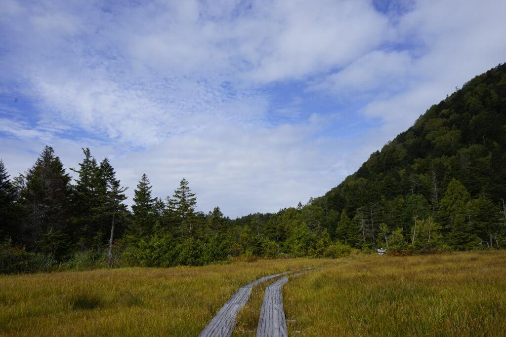 DSC5942 1024x683 - 【尾瀬(2)】草紅葉香る初秋の尾瀬。尾瀬沼から温泉小屋まで