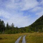 DSC5942 150x150 - 【尾瀬(2)】草紅葉香る初秋の尾瀬。尾瀬沼から温泉小屋まで