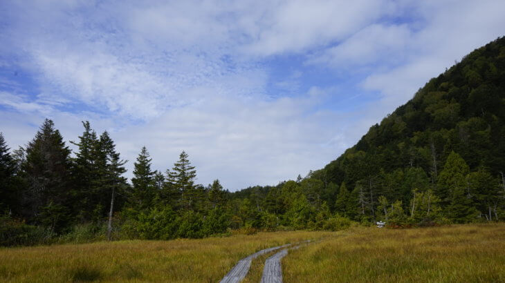 DSC5942 730x410 - 【尾瀬(2)】草紅葉香る初秋の尾瀬。尾瀬沼から温泉小屋まで