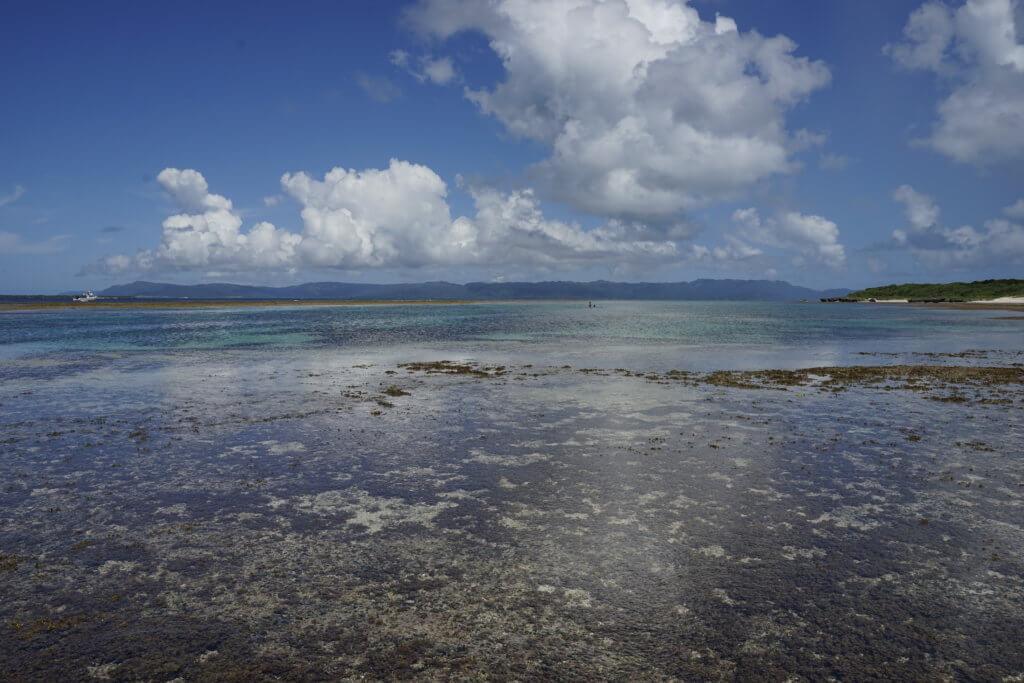 DSC8947 1024x683 - 【沖縄 黒島】石垣から日帰りでのんびりしませんか。離島を満喫しよう!