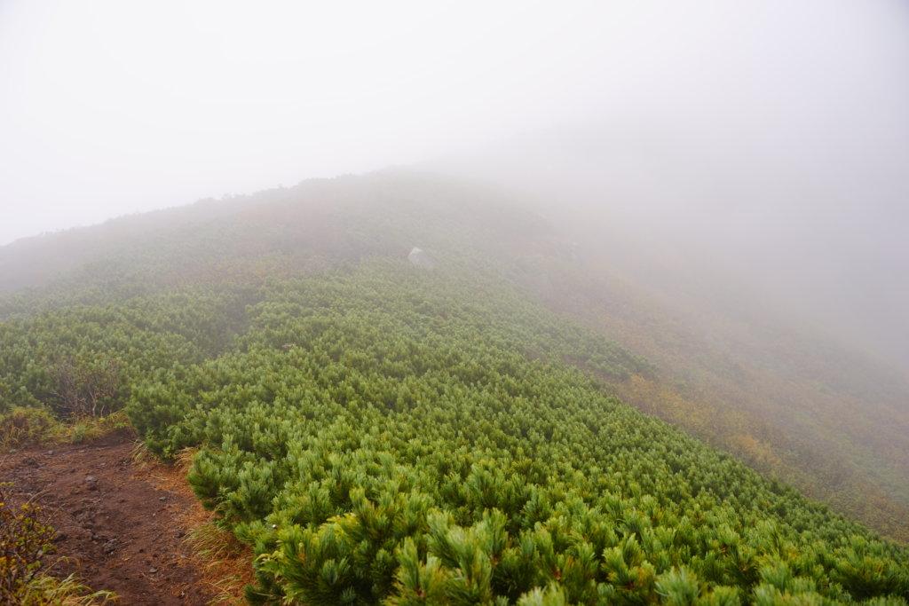 DSC9206 1024x683 - 【北海道 利尻岳】神々しさと海。最北端の百名山。北麓野営場から利尻岳への道のり