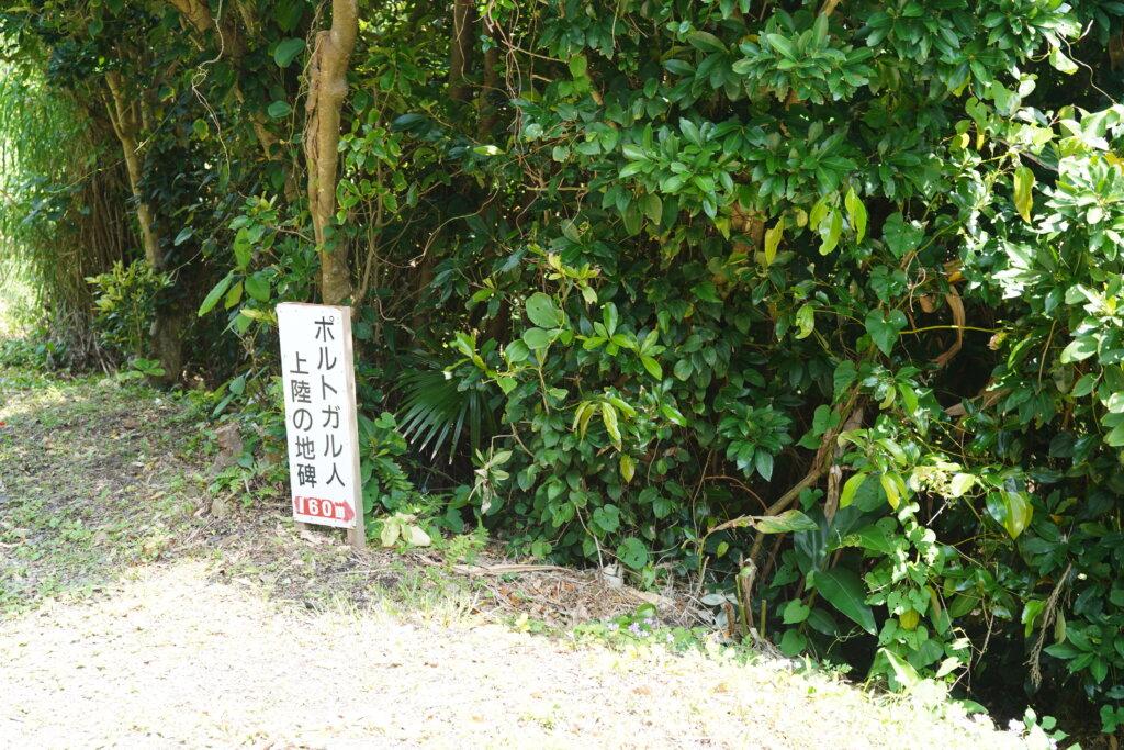 DSC01254 1024x683 - 【種子島】ここだけは外せない!種子島で行っておきたいところ5選!