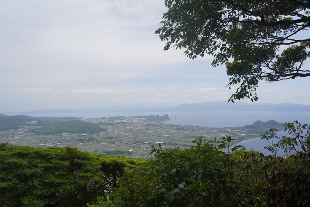 DSC01575 1024x683 - 【鹿児島旅行記3】空は青、山は黄色。そして輝く開聞岳。