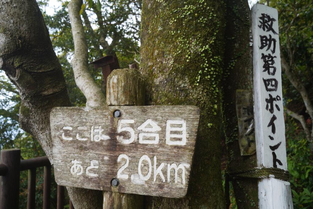 DSC01576 1024x683 - 【鹿児島旅行記3】空は青、山は黄色。そして輝く開聞岳。