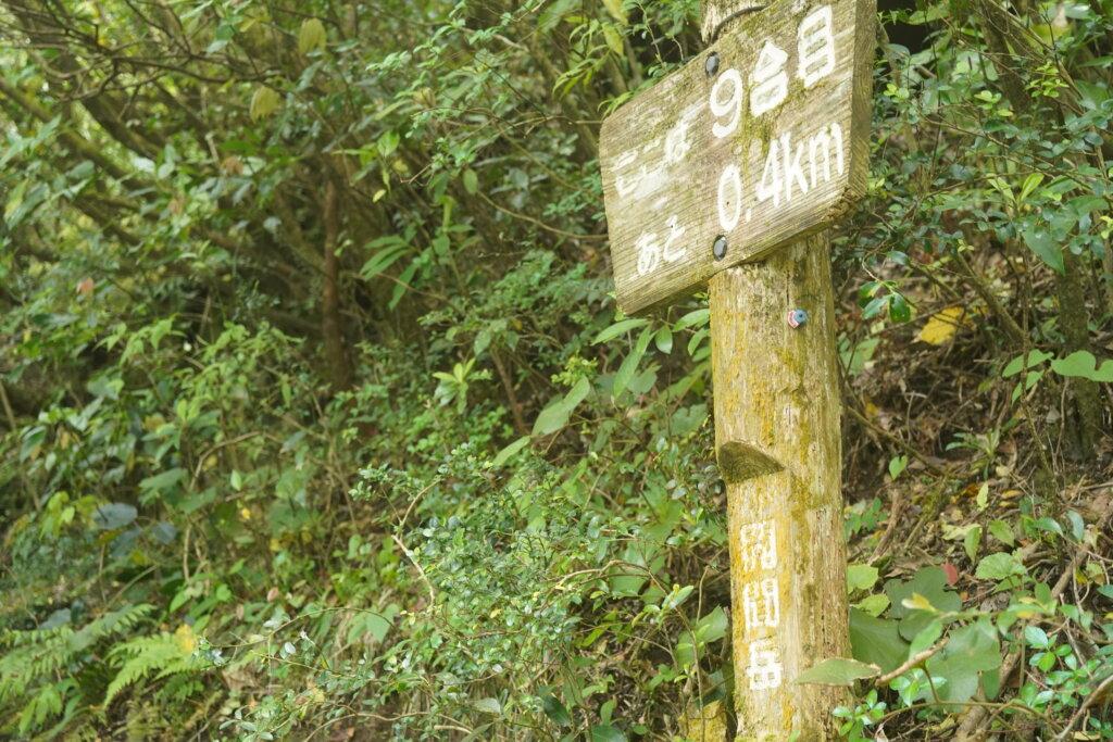 DSC01586 1024x683 - 【鹿児島旅行記3】空は青、山は黄色。そして輝く開聞岳。
