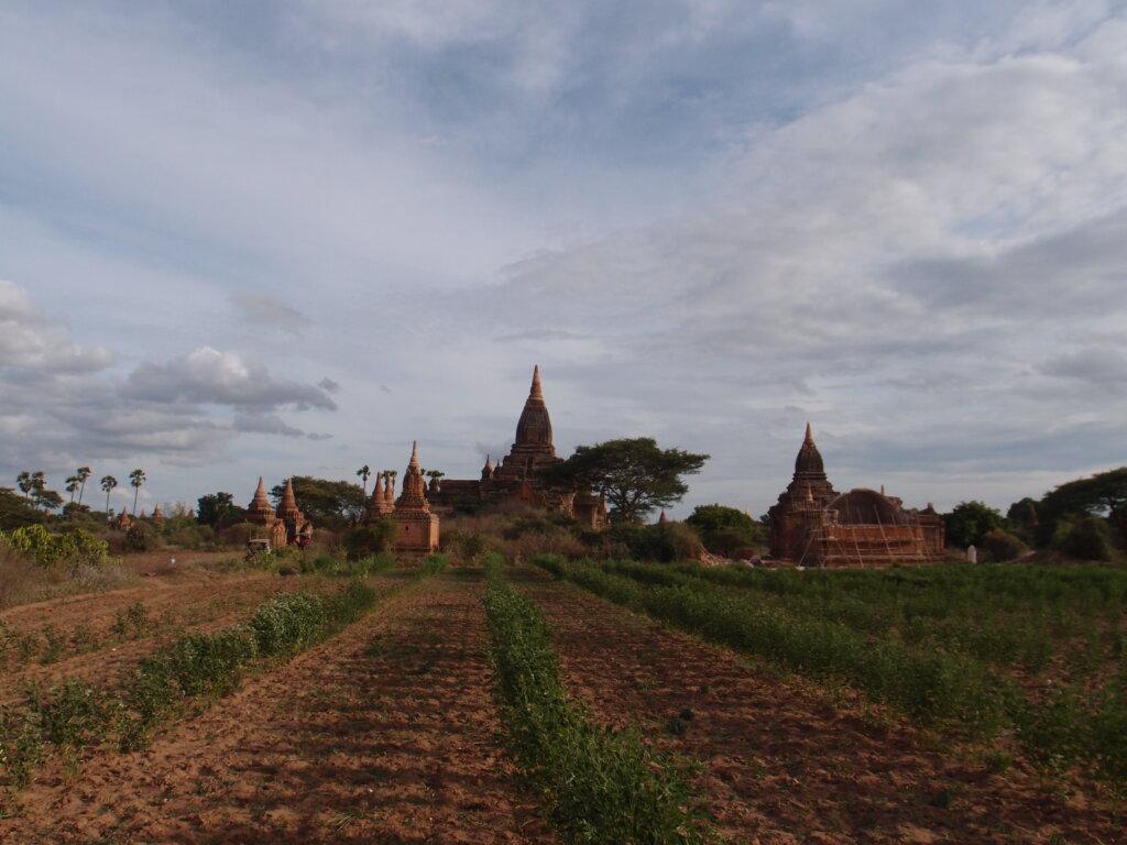 P8120801 1024x768 - 【ミャンマー ヤンゴン】東南アジアなエネルギーのシワに詰まった、夢と永遠と平和とミャンマー